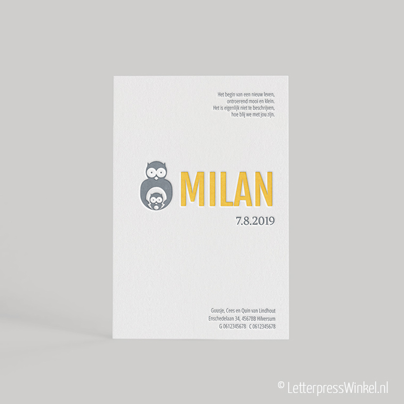 Milan_WEB-01-800×800